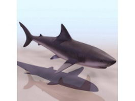Grey reef shark 3d model