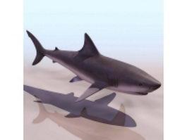 Grey reef shark 3d model