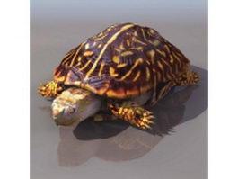 Painted turtle 3d model