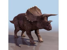 Adult triceratop 3d model