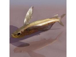 Parexocoetus flying fish 3d model