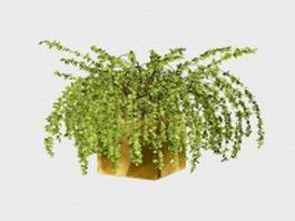 Garden potted plant 3d model