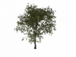 European mountain-ash tree 3d model