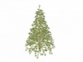 Deodar tree 3d model