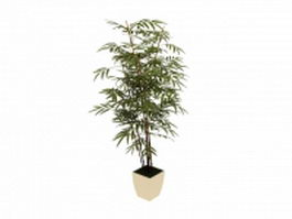 Potted bamboo plant 3d model