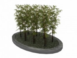 Ornamental bamboo plant in parterre bed 3d model