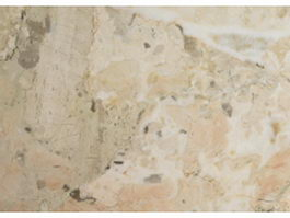 Quartzitic sandstone plate texture