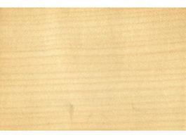 Sycamore maple wood grain texture