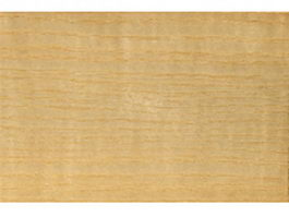 Seamless American ash wood grain texture