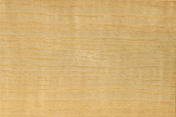 Seamless american ash wood grain texture image on