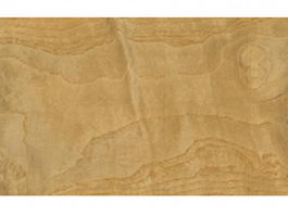 Ash burl wood grain texture
