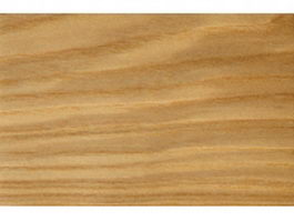 Closeup of ash wood grain texture