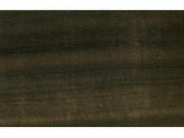Eucalyptus wood grain texture