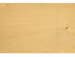 Silver linden wood grain texture