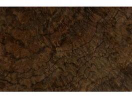 American chestnut wood burl texture