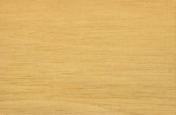 High Res Texture Of Closeup Photo Southeast Asian Ramin Wood Grain White Timber Background The Resolution Is Provided