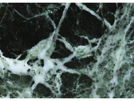 Verde tinos green marble surface texture