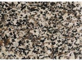 Golden autumn grain granite slab surface texture