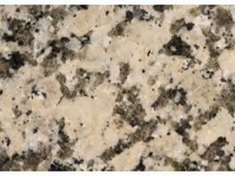 Giallo Fioriot granite slab texture
