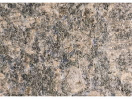 Ka Taer gold gneissic granite texture