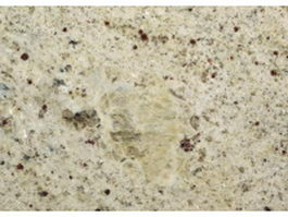 Close-up of fragmental limestone texture