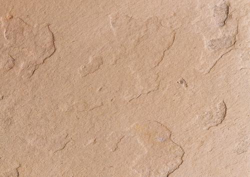 Red sandstone slab texture