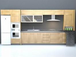 Domestic single-file kitchen design 3d model