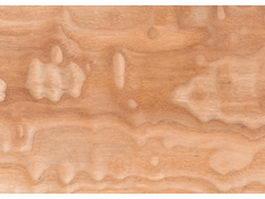 Timber burl texture