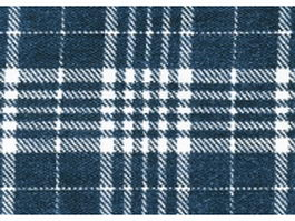 Blue and white plaid fabric texture