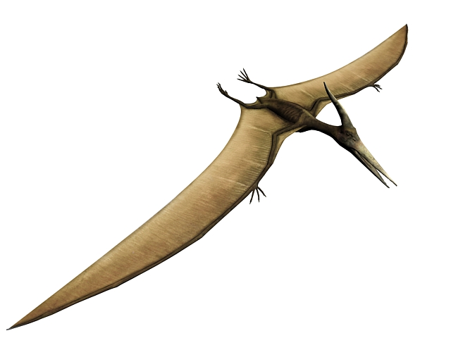 Pterodactylus Dinosaur 3d Model 3dsmax Files Free Download