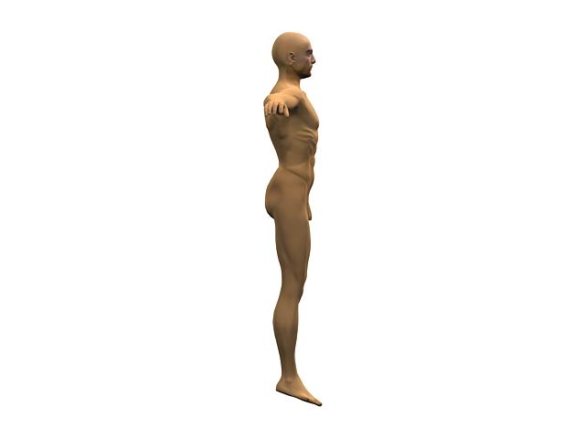Adult Man Body 3d Model 3dsmax Files Free Download