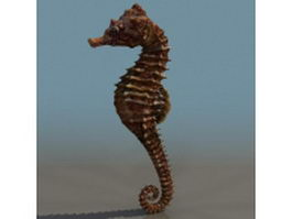 Spiny seahorse 3d model