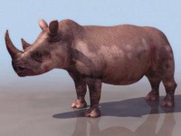 Black rhino 3d model