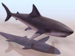 Shark 3d Model Free Download Cadnav Com