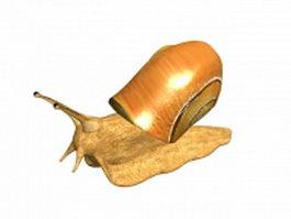 Freshwater snail 3d model