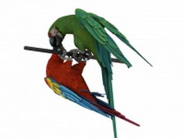 Two macaws 3d model