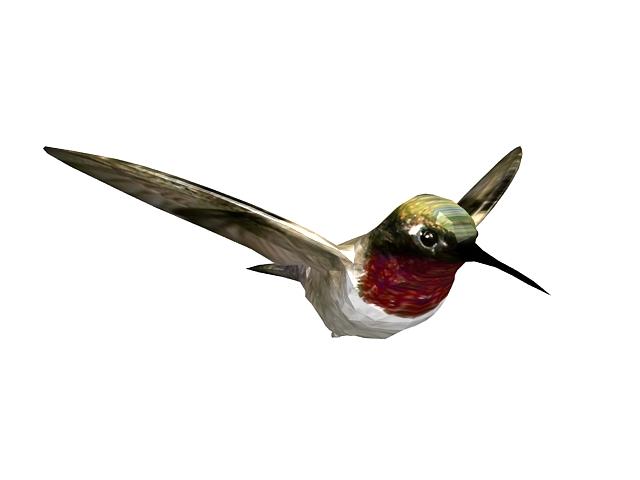 Humbird 3d model