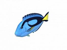 Powder blue tang fish 3d model