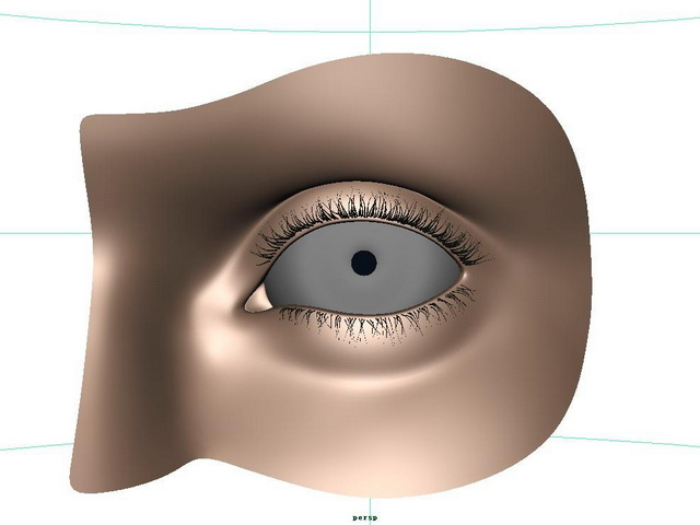 Human eye 3d model - CadNav