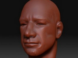 Man head basemesh 3d model