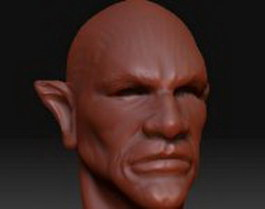 Elf male head 3d model