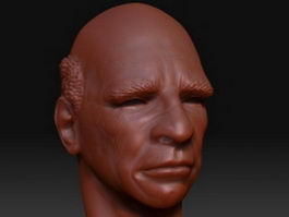 Old man head 3d model