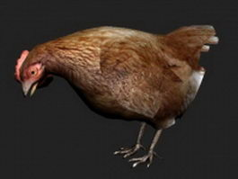 Brown hen 3d model