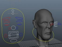 Man head face rig 3d model