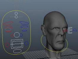 Man head face rig 3d model
