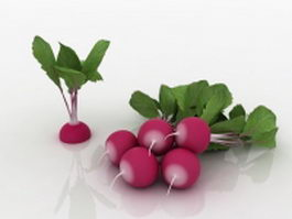 Radishes with plants 3d model