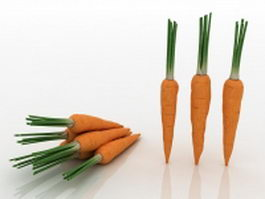Domestic carrots 3d model