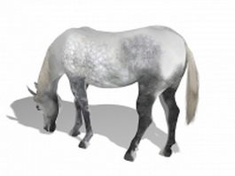 Grey horse 3d model