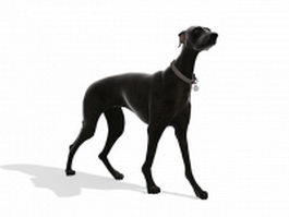 Black boxer dog 3d model