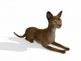 Ginger cat 3d model